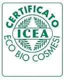 icea_logo.jpg