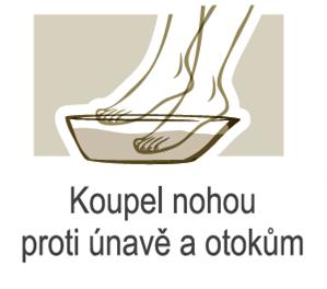 Zeleny_jil_Recepty_nohy_1.png